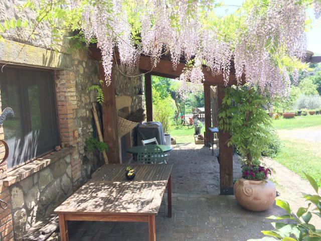 Glicine under Casa Desiderio
